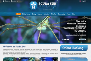 Scuba Sur Diving Network
