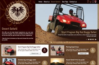 Falco Safari Website