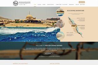 RSDS website