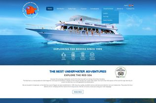 Blue Paradise website